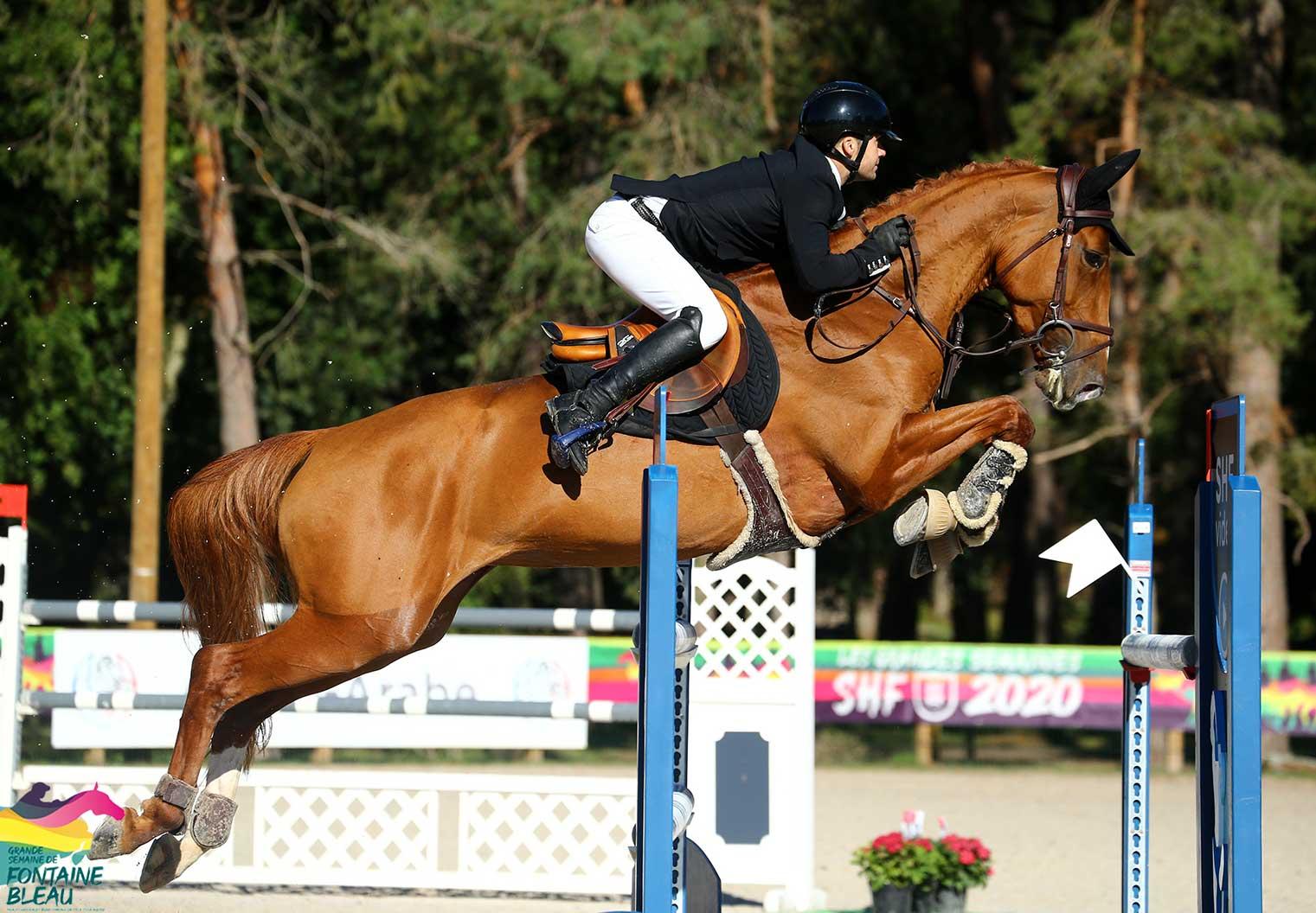Jument incroyable Doda du Nevez avec le cavalier Pro Gwenole Le Guen en finales des 7 ans à Fontainebleau